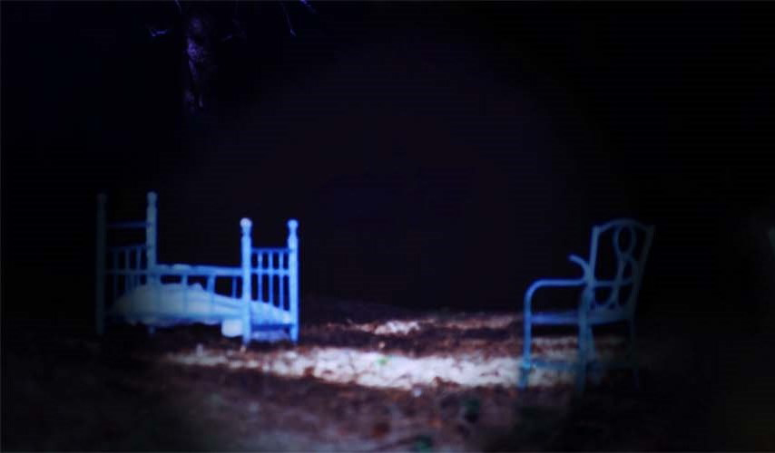 Essi compaiono dal nulla nella buia notte del bosco – Anno 2010 (1 parte)
