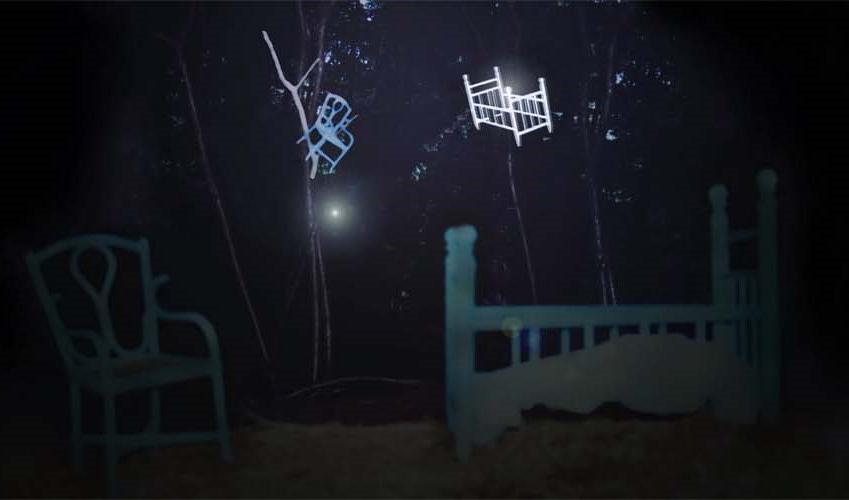 Essi compaiono dal nulla nella buia notte del bosco – Anno 2010 (2 parte)