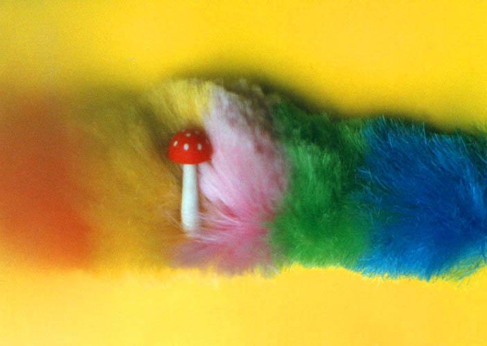 Eraser (10)